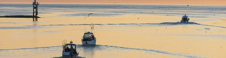 Sport fishing boats head out at dawn for a day on the water, heading out of Hardy Bay.